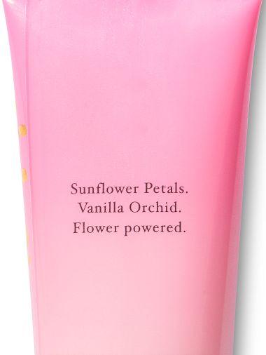 Crema-Corporal-Eternal-Sunflower
